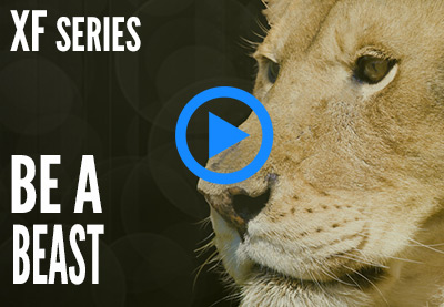 video series: be a beast